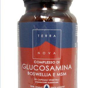 terranova-complesso-glucosamina-boswellia-msm-complex-magnifood