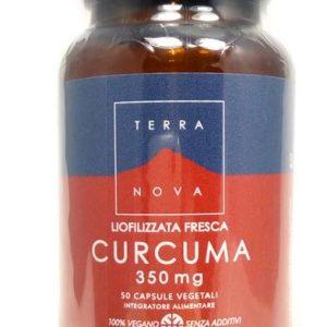 terranova complesso magnifood curcuma