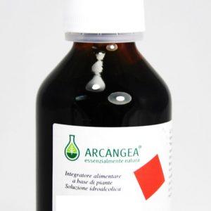 arangea soluzione idroalcolica 100ml