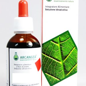 arcangea soluzione idroalcolica  16