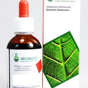 arcangea soluzione idroalcolica  42